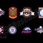 99baseballs-youth-baseball-league-comparisons-featured-fl