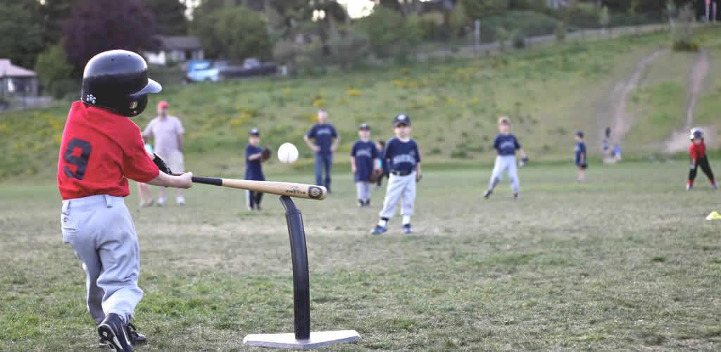 99baseballs-choosing-a-right-batting-tee-header-fl2